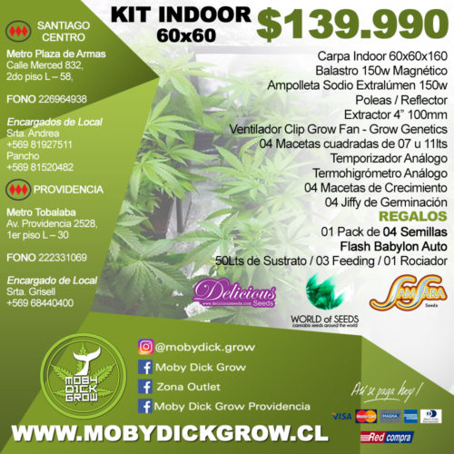 kit indoor