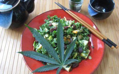 Cocinar con marihuana 10 consejos para principiantes
