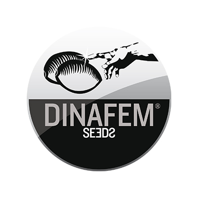 dinafem-seeds