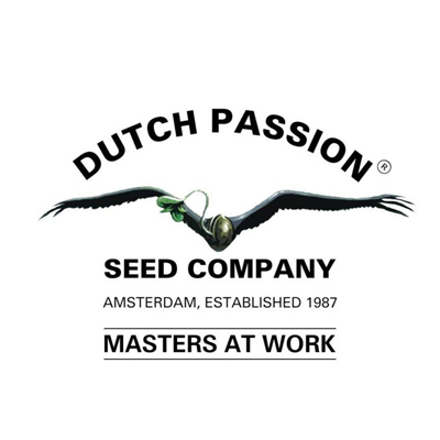 ducth-passion-seeds