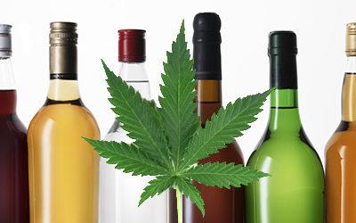 Los Efectos de Mezclar CBD y Alcohol