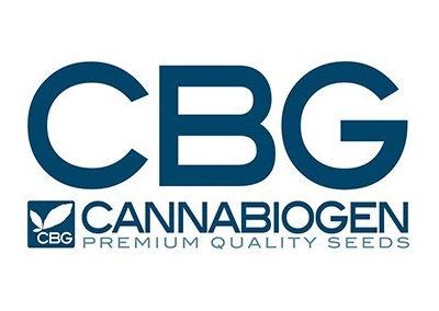 cannabiogen-seeds