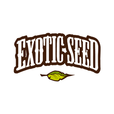 exotic-seeds