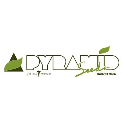 pyramid-seeds