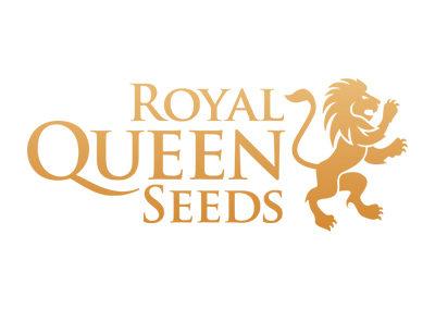 royal-queen-seeds