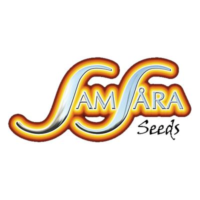 samsara-seeds
